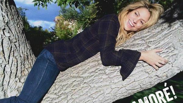 """Shakira celebra el éxito de """"Me enamoré"""" con una foto cómica en su Instagram"""
